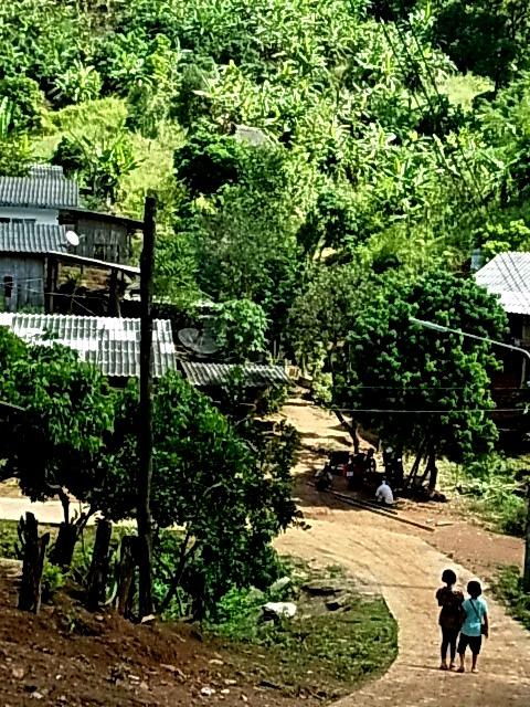 現地ツアー 蘭園 集落 滝すべり ラフティング 象乗り_e0141982_1825471.jpg