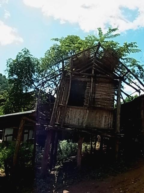 現地ツアー 蘭園 集落 滝すべり ラフティング 象乗り_e0141982_1826449.jpg