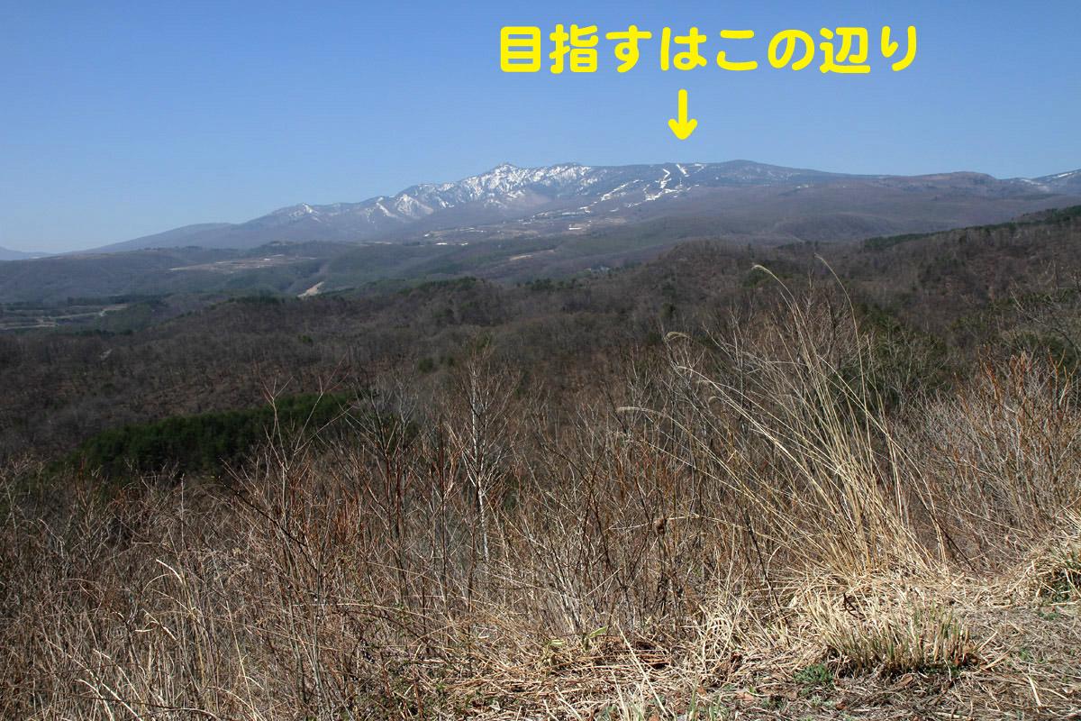 f0137508_2354710.jpg