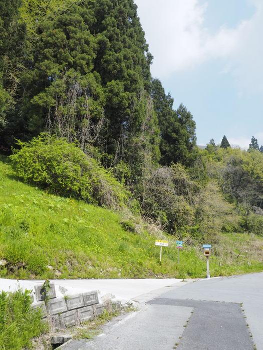 大江高山登山_c0116915_23502844.jpg