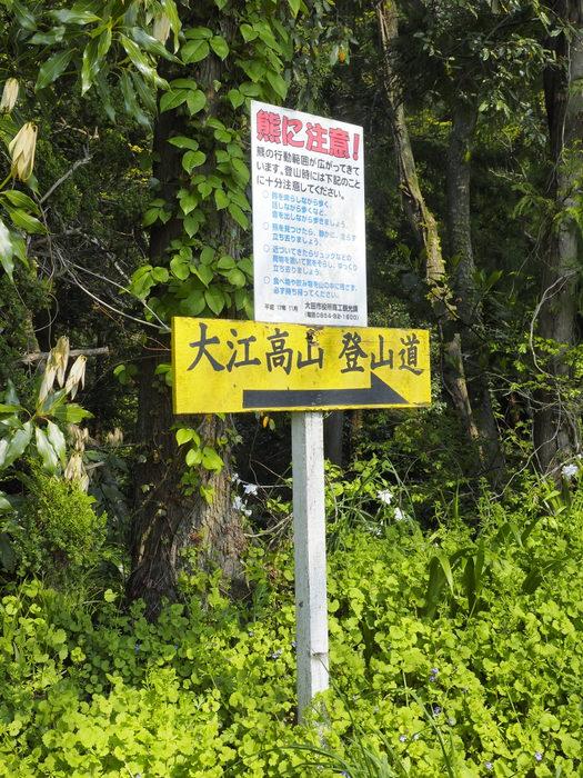 大江高山登山_c0116915_23505269.jpg