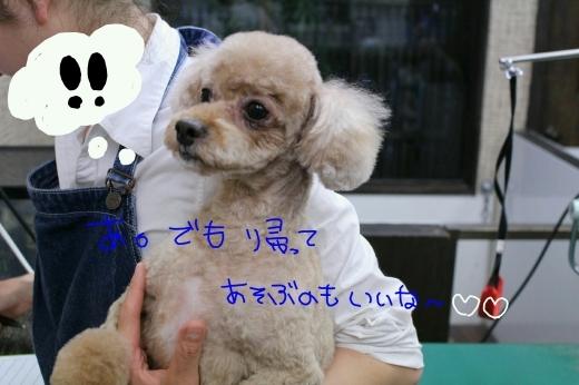 誕生日!!_b0130018_00575336.jpg