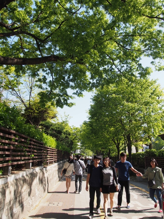 2015 4月 ソウル(2) 天気が良すぎて 気持ち良すぎる!!_f0062122_9153287.jpg