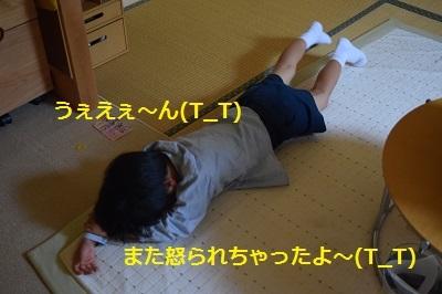 f0354827_21495231.jpg