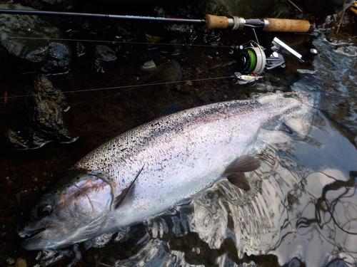 ・Fishing Diary  4/23_a0165135_19324789.jpg