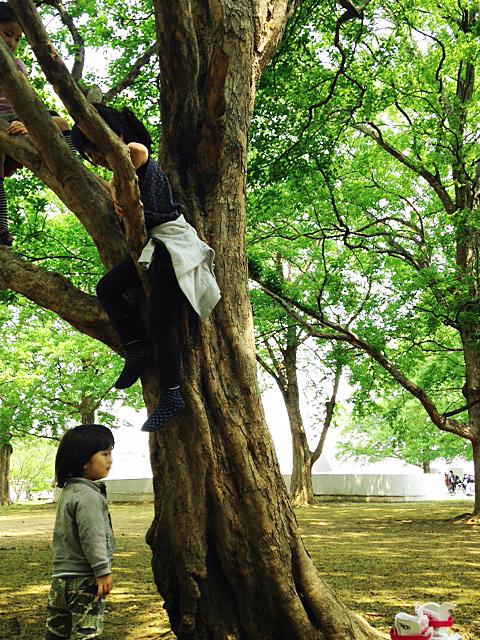 公園日和_e0172847_16100097.jpg