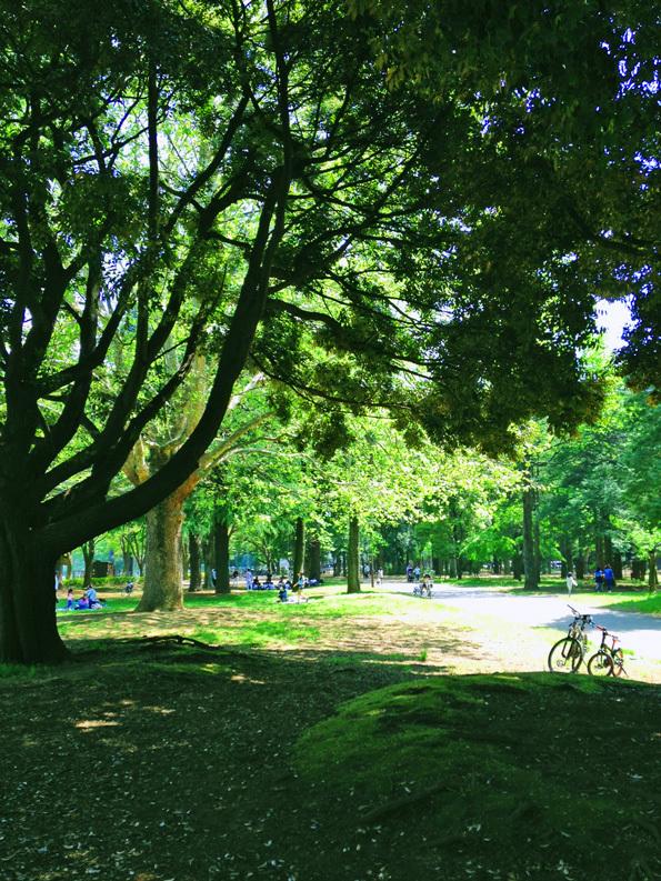 公園日和_e0172847_16125439.jpg