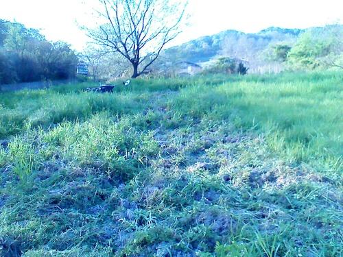 今年の田んぼの仕事始めです。_c0238355_21195611.jpg