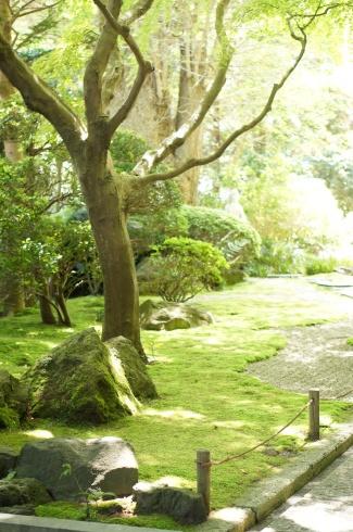 鎌倉散策_e0165361_20470180.jpg