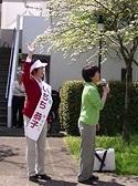 地方議会選挙を終えて思う「日本の選挙って変だ」_c0166264_4163614.jpg