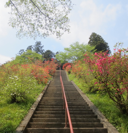 武蔵御嶽神社で健康長寿を祈願_a0109467_21562183.jpg