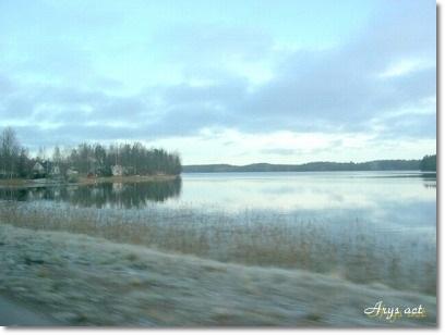 森を愛する北欧の人々_c0243369_178934.jpg