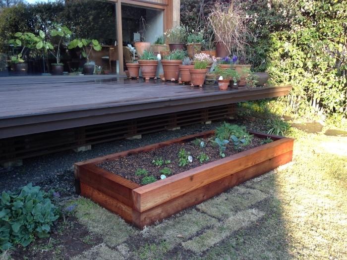 今年も菜園作っています♪_b0167282_22564890.jpg