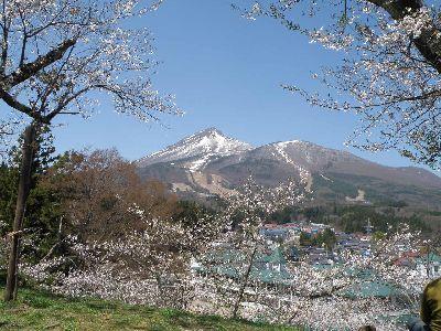 お花見日和_a0096989_22333187.jpg