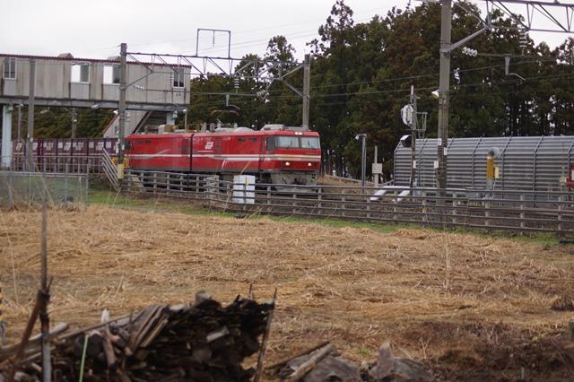 藤田八束の貨物列車写真集:春爛漫貨物列車が勢揃い、「桃太郎」「金太郎」「RED BEAR」_d0181492_17435614.jpg
