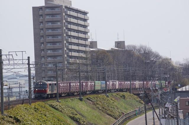 藤田八束の貨物列車写真集:春爛漫貨物列車が勢揃い、「桃太郎」「金太郎」「RED BEAR」_d0181492_17443216.jpg