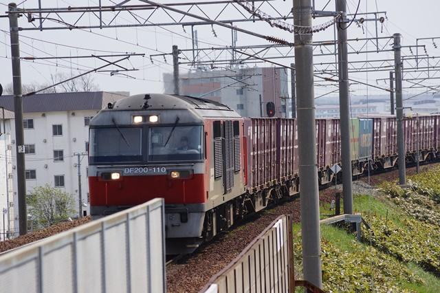 藤田八束の貨物列車写真集:春爛漫貨物列車が勢揃い、「桃太郎」「金太郎」「RED BEAR」_d0181492_17451119.jpg