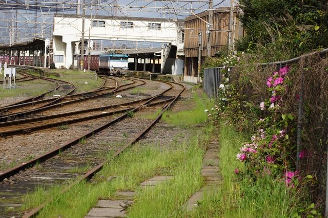 藤田八束の貨物列車写真集:春爛漫貨物列車が勢揃い、「桃太郎」「金太郎」「RED BEAR」_d0181492_19455413.jpg
