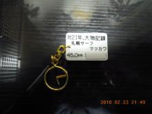 e0338196_10165197.jpg