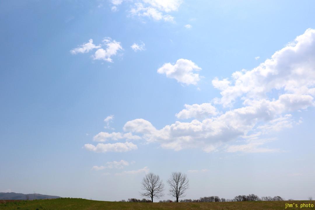 耕す~もどきが丘の春_a0158797_1293230.jpg