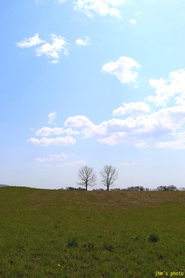 耕す~もどきが丘の春_a0158797_1322660.jpg