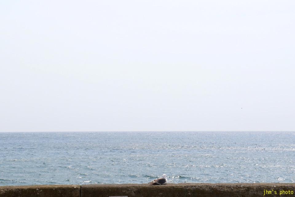 何もない大森浜の海_a0158797_22393115.jpg