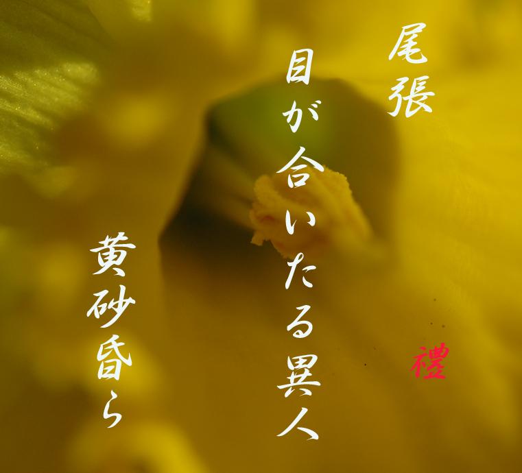 d0095910_121041.jpg