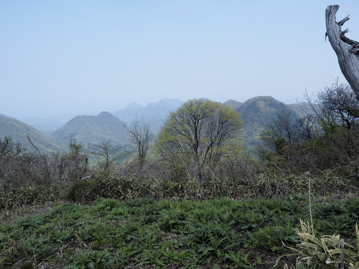大江高山登山_c0116915_02788.jpg
