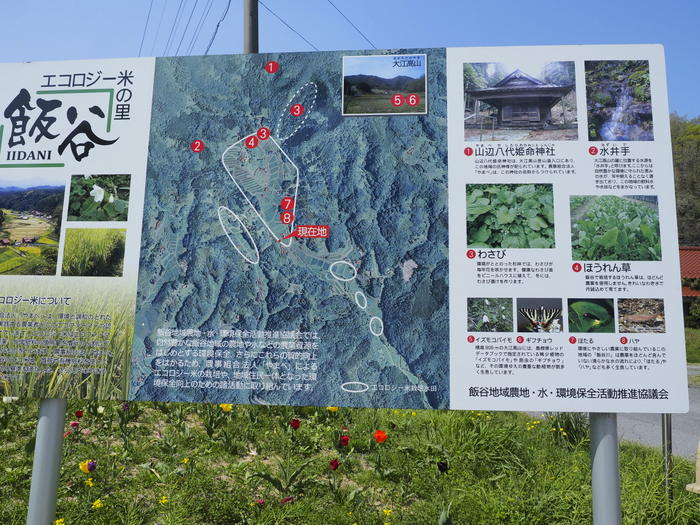 大江高山登山_c0116915_0421350.jpg