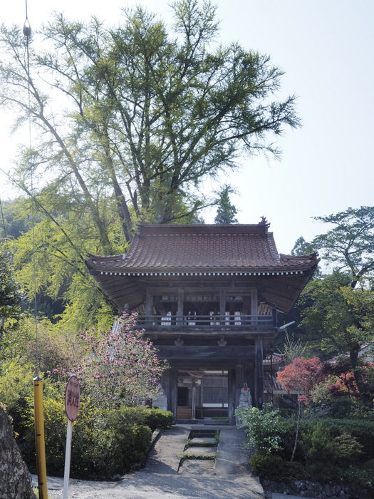大江高山登山_c0116915_0435065.jpg