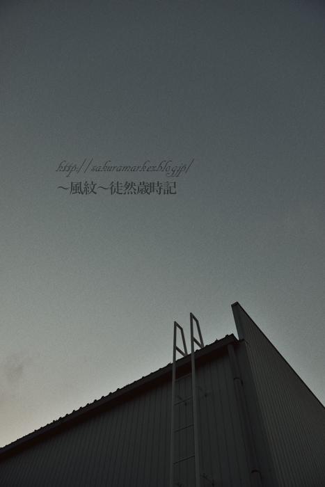 どこへ上る・・・。_f0235723_19442685.jpg