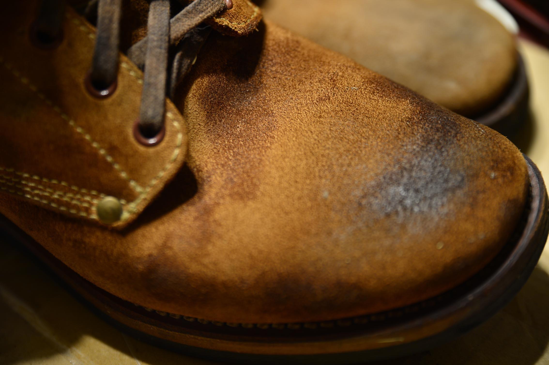 靴に塗ってみた_b0310424_12465210.jpg