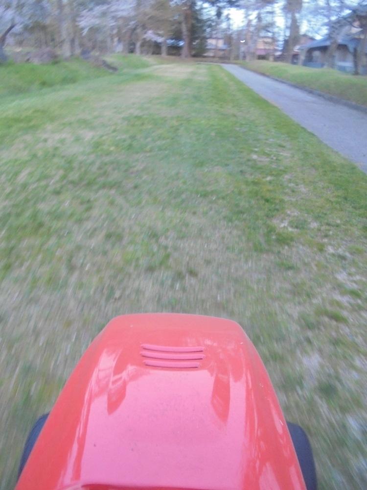 芝刈り開始_c0111229_1942945.jpg