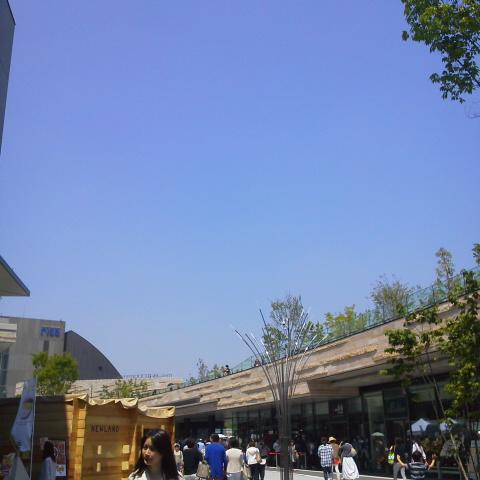 青空_d0014133_11401426.jpg