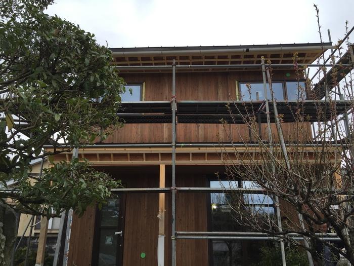 外壁の杉板と日本庭園_e0189939_1821315.jpg