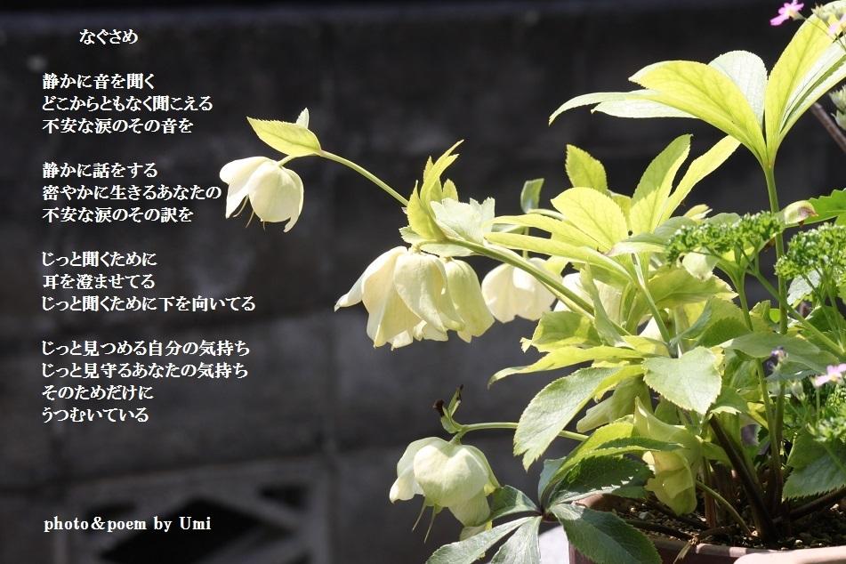 f0351844_08431976.jpg