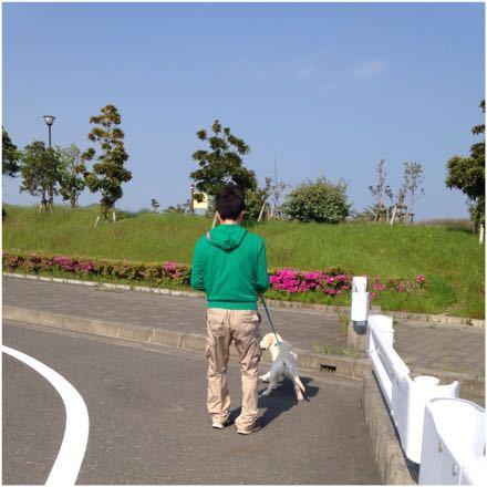 歩く練習をしなくっちゃ!_e0293553_18454828.jpg