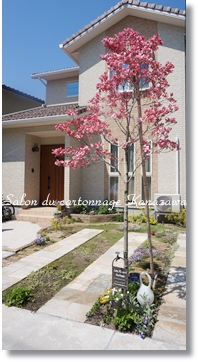 お庭とインテリアボックス_b0244959_2228576.jpg
