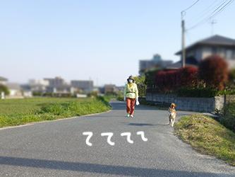 b0057675_930029.jpg