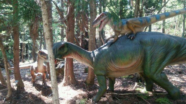 恐竜博物館へ行き、ビックリがいっぱい! 福井は最高!_e0119092_11011809.jpg