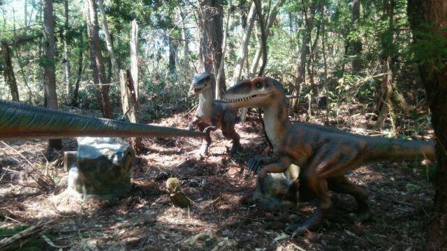 恐竜博物館へ行き、ビックリがいっぱい! 福井は最高!_e0119092_11021893.jpg