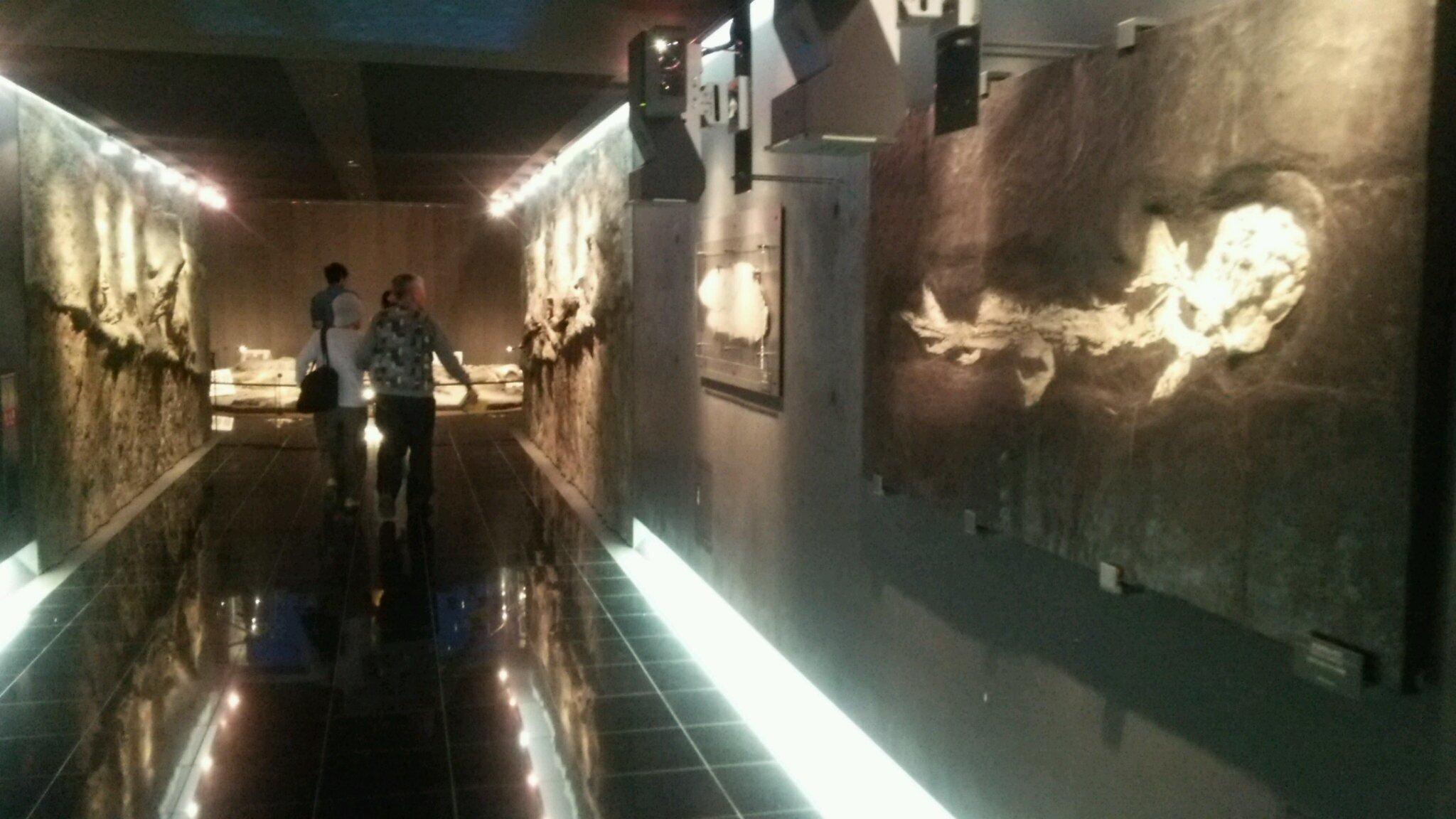 恐竜博物館へ行き、ビックリがいっぱい! 福井は最高!_e0119092_11092263.jpg