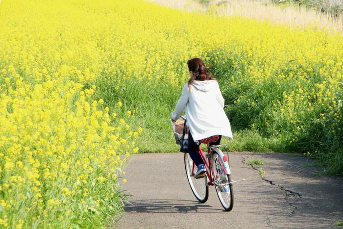 春 爛漫_d0150720_12512423.jpg