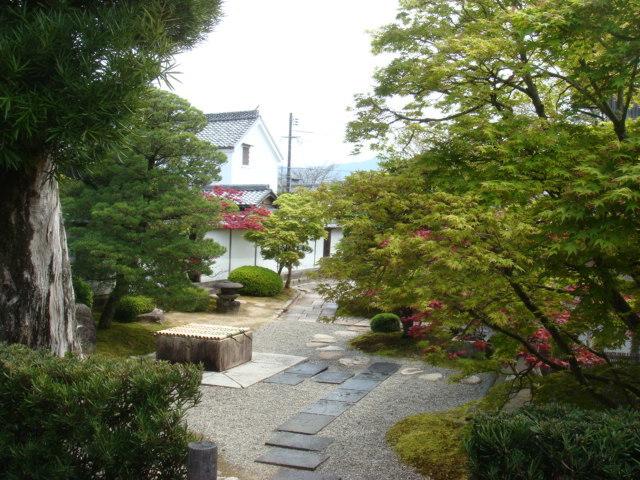 秋の新庭公開・呈茶席_f0101949_15425911.jpg