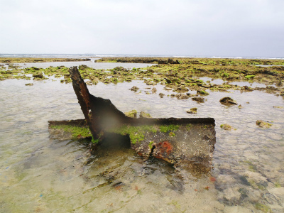 カーミージーの海の散策_c0180460_13483458.jpg