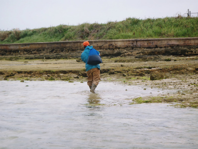カーミージーの海の散策_c0180460_13571616.jpg