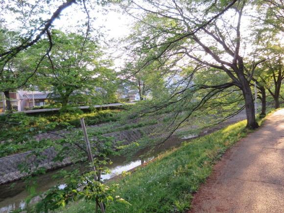 奈良、玄人バス旅 ~日曜の朝に~_c0001670_22222978.jpg