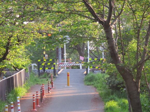 奈良、玄人バス旅 ~日曜の朝に~_c0001670_22381850.jpg