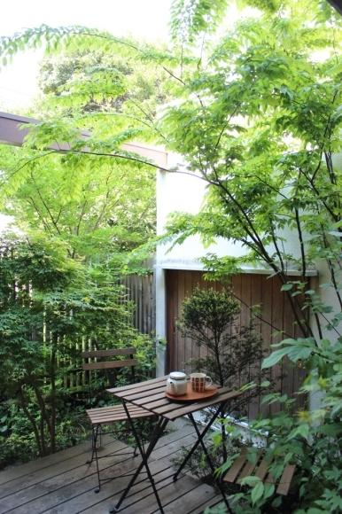 新緑の庭はより鮮やかに_c0310571_23545052.jpg