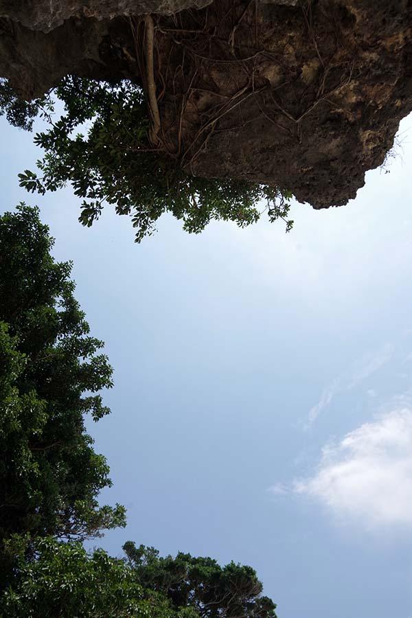 a0016090_20115272.jpg